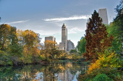 Southwest corner of Central Park, looking east, NYC