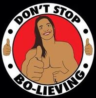Don't Stop Bolieving