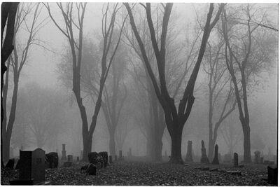 4684094-3301193709-foggy