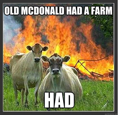 File:Evil Cows!.jpg