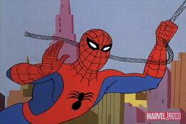 Spider-Man(Earth-6799)