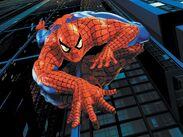 == Spider-Man(Earth-616) ==