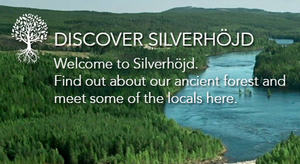 Silverhojd-discover