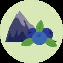File:Blueberrymountain.png