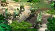 Compsognathus DD