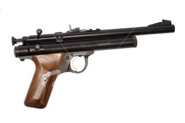 File:Tranquiliser gun.jpg