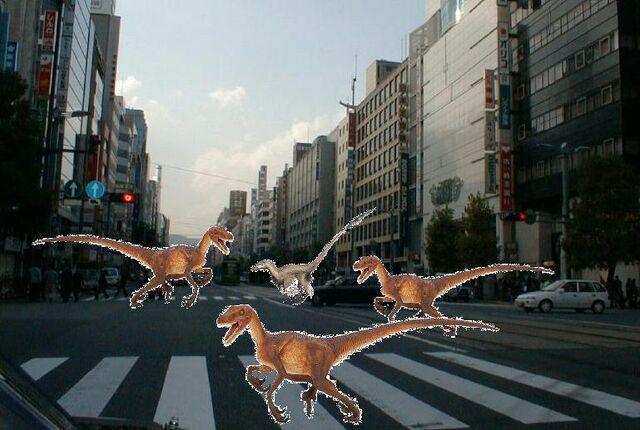 File:Raptors in the city.jpg