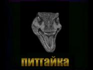 Pythnut Logo