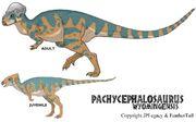Pachycephalosaurus