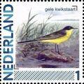 Netherlands 2011 Birds in Netherlands a15.jpg