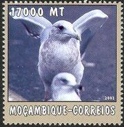 Mozambique 2002 The World of the Sea - Sea Birds 3 b