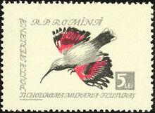Romania 1959 Birds j