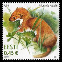 Estonia 2013 Estonian Fauna – Weasel a