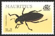Mauritius 2000 Insects (Beetles) b