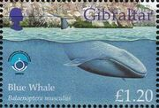 Gibraltar 1998 UNESCO International Year of the Ocean d
