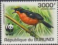 Burundi 2011 WWF Papyrus Gonolek b.jpg