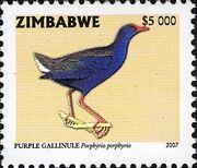 Zimbabwe 2007 Birds from Zimbabwe f