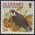 Alderney 2000 WWF Peregrine Falcon c.jpg