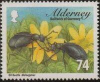 Alderney 2013 Alderney Beetles g