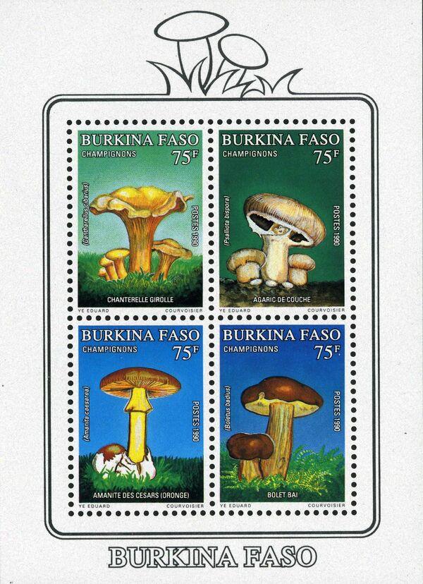Burkina Faso 1990 Mushrooms e