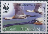 Romania 2006 WWF Eurasian Spoonbill b