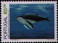 Portugal 1983 Brasiliana 83 - International Stamp Exhibition - Marine Mammals d