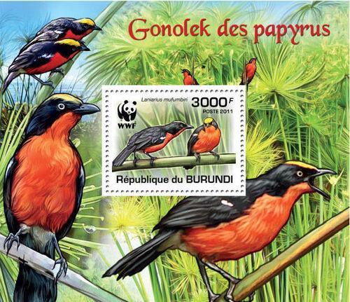 Burundi 2011 WWF Papyrus Gonolek o