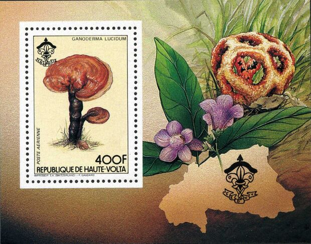 Burkina Faso 1984 Scouting and Fungi l