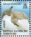 British Antarctic Territory 2008 Penguins of the Antarctic f.jpg
