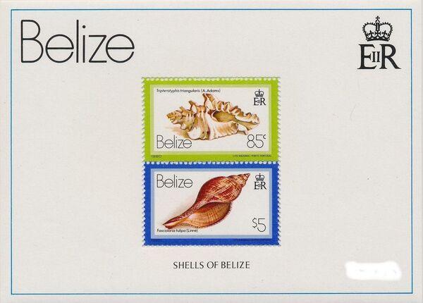 Belize 1980 Shells and Sea Snails t
