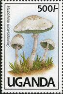Uganda 1991 Mushrooms of Uganda g