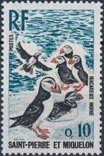 St Pierre et Miquelon 1973 Birds b