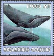 Mozambique 2002 The World of the Sea - Whales 2 d
