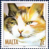 Malta 2004 Cats a