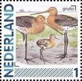 Netherlands 2011 Birds in Netherlands a22.jpg