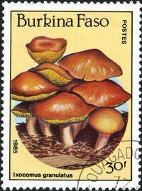 Burkina Faso 1985 Fungi c