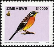 Zimbabwe 2005 Birds from Zimbabwe d