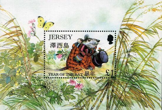 Jersey 1996 Year of the Rat g