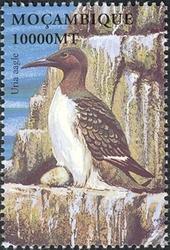 Mozambique 2002 Sea Birds of the World i