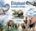 Burundi 2011 Elephants of the African Savanna SSf.jpg