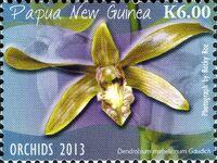 Papua New Guinea 2013 Orchids c