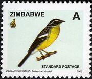 Zimbabwe 2005 Birds from Zimbabwe f
