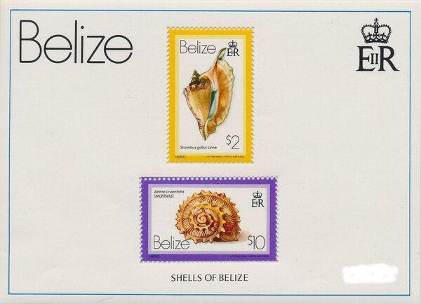 Belize 1980 Shells and Sea Snails u