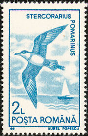 Romania 1991 Water birds d