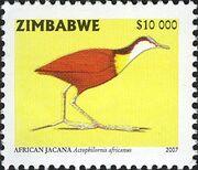 Zimbabwe 2007 Birds from Zimbabwe g