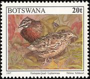 Botswana 1997 Birds d