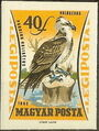Hungary 1962 65th Anniversary of the Agricultural Museum - Birds of Prey j.jpg