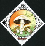 Mongolia 1985 Mushrooms f