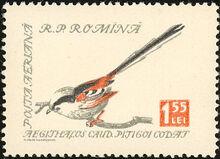 Romania 1959 Birds i