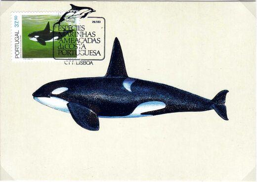 Portugal 1983 Brasiliana 83 - International Stamp Exhibition - Marine Mammals i